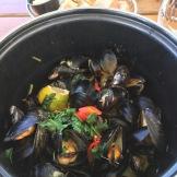 Mussels Oslo Norway
